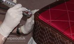 Bed Bug Removal in Preston
